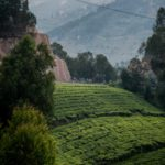 David Lozano | Team Novo Nordisk | 2019 Tour du Rwanda